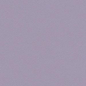 Zest Lilac
