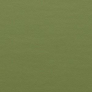 Zest Wasabi