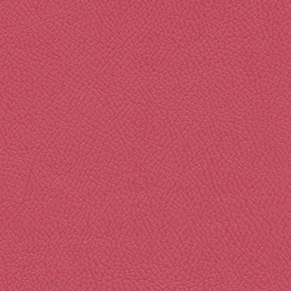 Paint Pot Pink